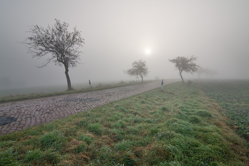 Nebelstrasse