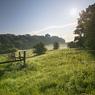 seeben meadow paddock sun feldauge fence