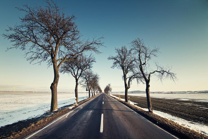 alley petersberg snow cross trees feldauge