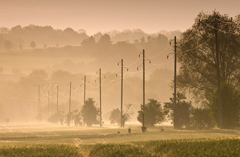 power line rural field morning sun sunrise feldauge