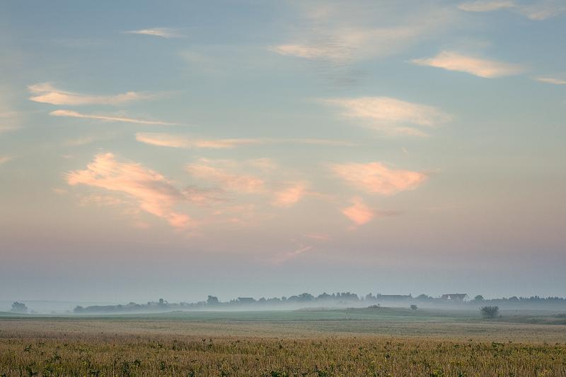 morning gimritz feldauge september