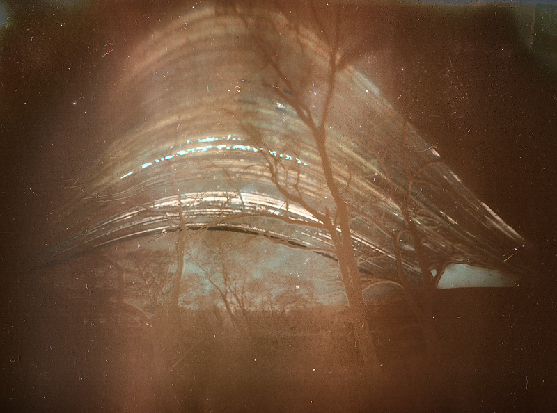 solargraphy sun trees feldauge