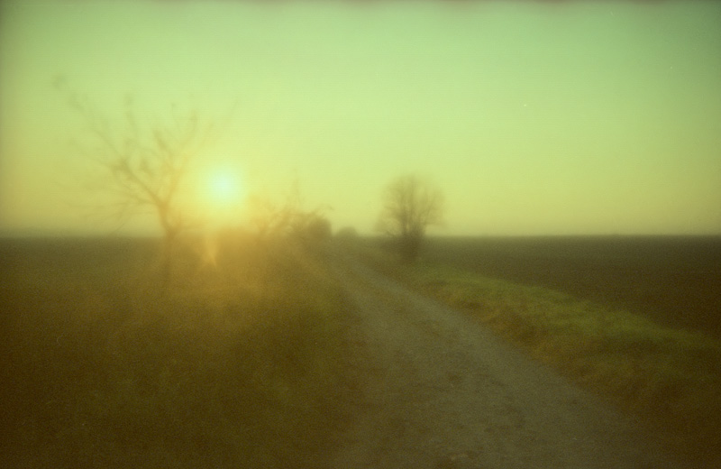 soft blur analogue feldauge räthern cross sun