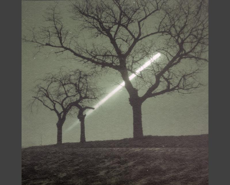 sunrise trees kütten solargraphy solarigrafia feldauge boxcam
