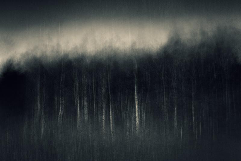 inner landscape blur B&W feldauge endpoint