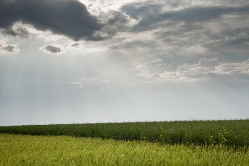 field sun clouds minimal rays feldauge seeben