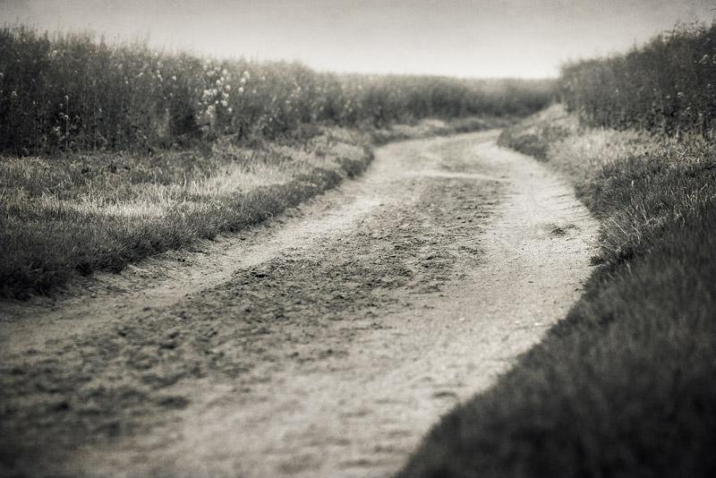 trail road seeben B&W feldauge