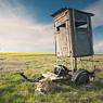 raps oilseed field blue sky deutleben jägerstand feldauge